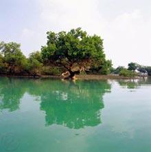 Protected Wildlife Zones, Hormozgan