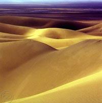 Plains and Deserts , Kerman