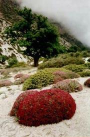 Jahan Nama Mountain, Gorgan