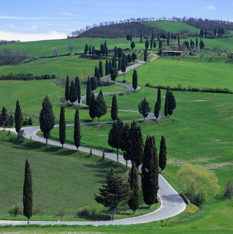 Country road, Tuscany, Italy (near Pienza)