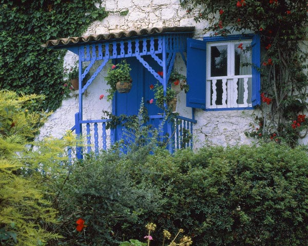 Holiday house and flowers