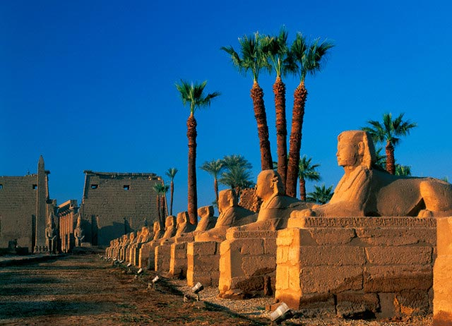 Avenue of the Sphinxes at Luxor