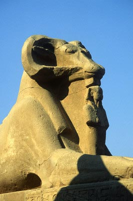 Ram Headed Sphinx, Temple of Amun, Karnak, Lu