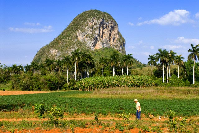 Agricultural Fields in Front of Geologic Form