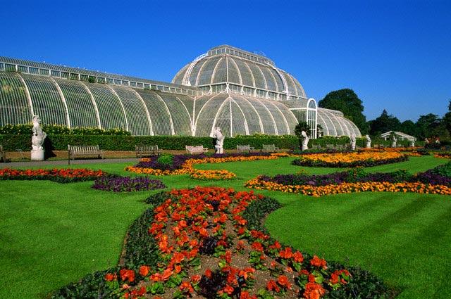 Palm House at Kew Gardens