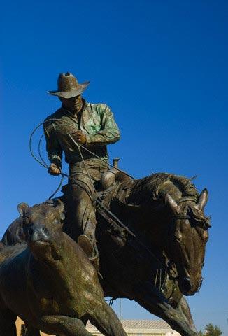 USA, Texas, Amarillo, American Quarter, Horse