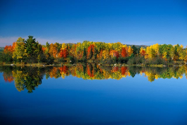 Autumn Color Reflected in Ottawa River