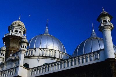 Shining Domes of Jamia Mosque