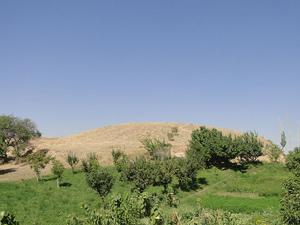 تپه گوگجه قیا