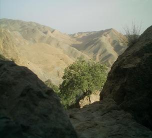 عکس اول غارهای تاریخی چنشت