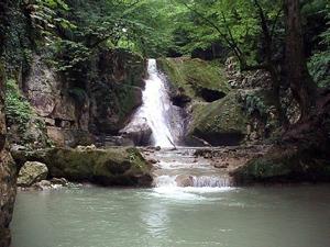 پارک ملی گلستان یا جنگل گلستان