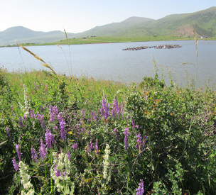 دریاچه خلشکوه