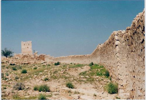 اطلاعات گردشگری قلعه قلات