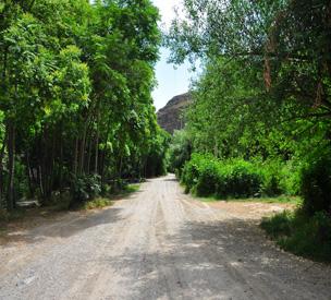 عکس دوم پارک ملی تندوره