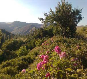 عکس دوم روستای مجارشین