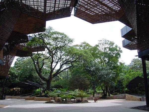 Orquideorama del Jardin