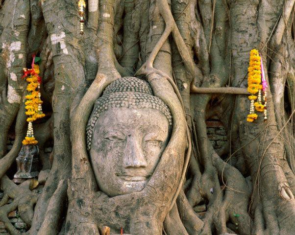 اطلاعات گردشگری Buddha
