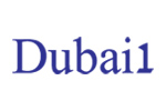 طراحی سایت شرکت گردشگری دبی