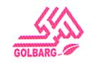 طراحی سایت آژانس مسافرتی گلبرگ سیر