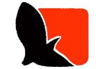طراحی سایت آژانس مسافرتی پاییز صحرا آسمان