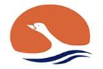 طراحی سایت آژانس مسافرتی و گردشگری هامون آرال