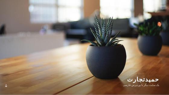طراحی سايت دفتر بازرگانی حمید