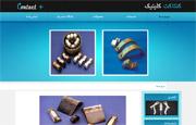 طراحی سایت فروشگاه کنتاکت کلینیک