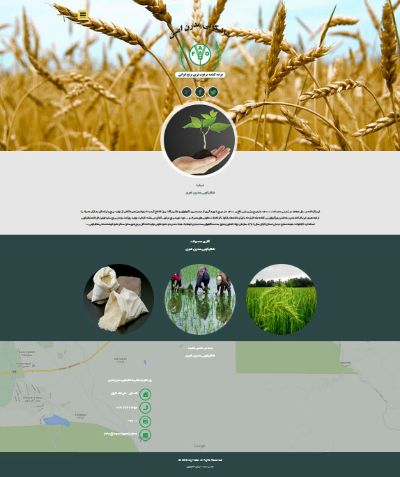طراحی سایت برنج کوب
